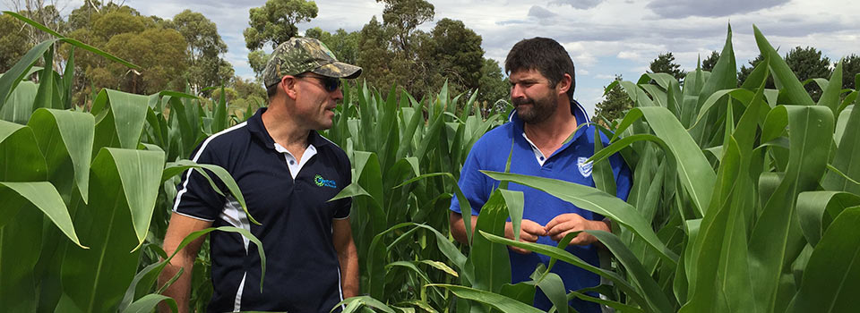 Agronomy with Total Grower Services